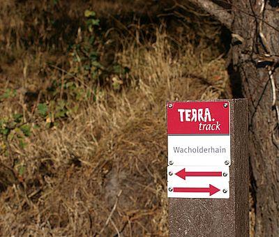 Gut ausgeschildert führt der Barfußpfad Sie durch den Wacholderhain in Merzen. Folgen Sie den Schildern und genießen die Natur in vollen Zügen.