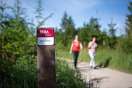 300 Millionen Jahre Erdgeschichte, 1.200 Kilometer Wanderwege und weit über 100 Naturdenkmale: Im Natur- und UNESCO Geopark TERRA.vita verbindet sich auf insgesamt 82 Wandertouren – den TERRA.tracks – Wanderlust mit Entdeckerglück.