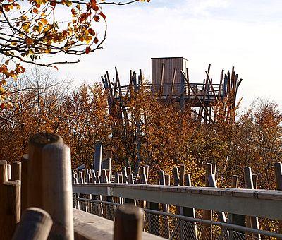 Der Baumwipfelpfad in Bad Iburg schärft die Sinne für die Besonderheiten des Lebensraumes Wald und für die erdgeschichtlichen Zusammenhänge. Er verhilft aber auch zu bezaubernden Ausblicken und inspirierenden Überblicken, denn über die Kronen hinweg fällt der Blick auf Schloss Iburg, auf die umliegenden Parkanlagen und auf die tiefgrünen Höhen des Teutoburger Waldes.