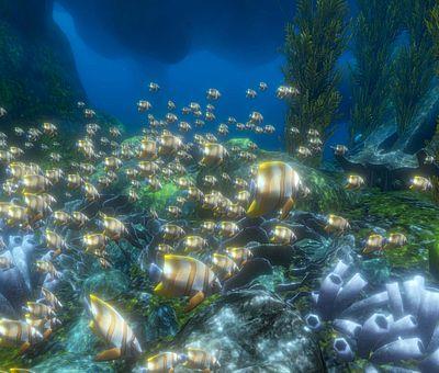 Auf diesem Foto kann man einen Ausschnitt davon sehen, in welche virtuellen Welten man beim VR-Schnorcheln im Nettebad eintaucht. Auf dem Bild sind viele kleine weiße Fische mit leuchtenden gelben Streifen über dem Meeresboden zu sehen. Unterwasser sieht man neben den Fischen auch Algen und leuchtende Wasserpflanzen.