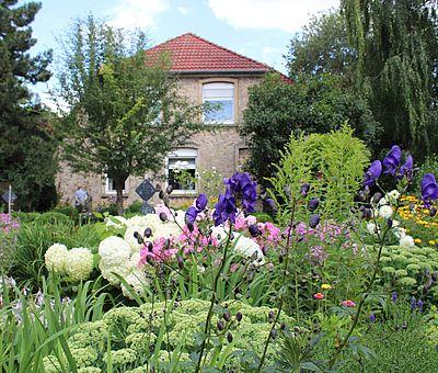 Natur-Erlebnis im Museumsgarten Bad Laer