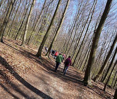 Naturerlebnis im Freeden in Bad Iburg: TERRA.track Freedenblüte