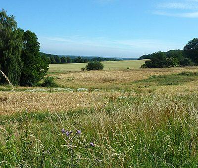 Die Osnabrücker Rund-Tour verknüpft einige der besten Ausflugsziele der Friedensstadt Osnabrück mit reizvollen Naturerlebnissen im UNESCO Natur- und Geopark TERRA.vita. Zu den Highlights der 48 km langen kompakten Radrundfahrt im Osnabrücker Land gehört auch die herrlichen Ausblicke in die grüne Landschaft.