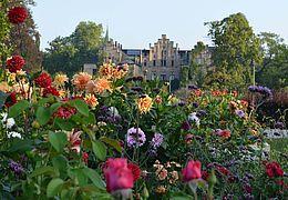 Wethin leuchten die Gärten von Schloss Ippenburg in Bad Essen. Von Mai bis August können die gesamten prächtigen Gartenanlagen bestaunt werden.