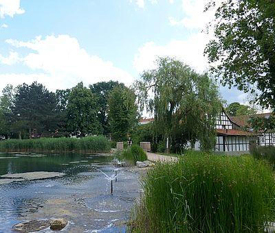 Der Kurpark in Bad Laer ist ein beschaulicher Ort zum Bummeln und die Seele baumeln lassen.