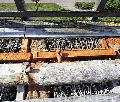 Verschiedensten Konstruktionen des Gradierwerks in Bad Rothenfelde werden während einer Führung erläutert.