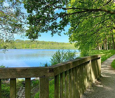Der Rubbenbruchsee in Osnabrück ist ein schöner Ort zum Spazieren und Verweilen