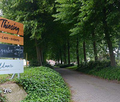 """Hier seht ihr die Einfahrt vom Ausflugslokal Hof Thiesing in Osnabrück. Links und rechts stehen Bäume, wie man es aus einer Allee kennt. Unter den Bäumen wächst Efeu. Zwischen den Bäumen führt ein gepflasterter weg bis zum Lokal. Links vorne auf dem Bild sieht man ein Banner mit unterschiedlichen Schriften. Das oberste Schild trägt den Schriftzug """"Hof Thiesing"""" und darunter noch die Ergänzung """"Laden, Café und Events"""". Auf dem mittleren Schild ist in weißer Schrift """"Biergarten, Sonntag ab 12"""" zu lesen. Das untere Schild trägt die Worte """"Goldmarie Schmuckmanufaktur"""". Das weist darauf hin, dass es auf Hof Thiesing auch eine Goldschmiede gibt. Vor den Schildern liegt ein großer Stein mit der Nummer 316. Wahrscheinlich ist das die Hausnummer von Hof Thiesing an der Meller Straße."""