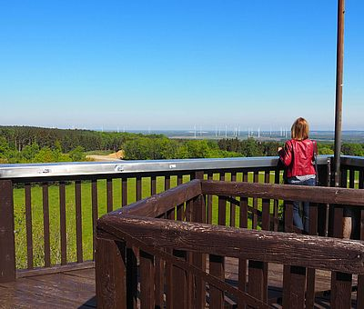Ein Naturerlebnis im Osnabrücker Land: ein herrlicher Ausblick vom Aussichtsturm in Venne