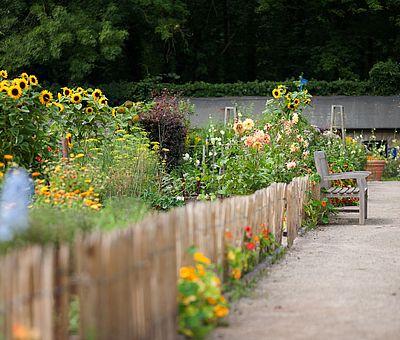 Auf diesem Foto bekommt man einen Einblick, wie der Küchengarten im Schlossgarten auf der Ippenburg, im Osnabrücker Land bei Bad Essen ausschaut. Links im Foto kann man den Küchengarten mit seinen Kräutern und wilden Blumen, die in orange und gelb blühen sehen. Rechts neben dem Küchengarten führt ein Weg zu einem weiteren Garten und man sieht am Ende des Weges ein weiteres Haus mit Garten.