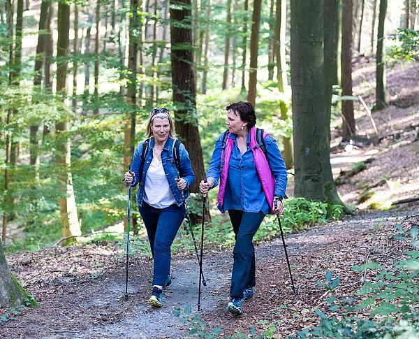 Es gibt nichts schöneres als einen herbstlichen Spaziergang durch den Wald. Im Osnabrücker Land locken viele Wege zu kurzen oder längeren Spaziergängen durch die Natur.