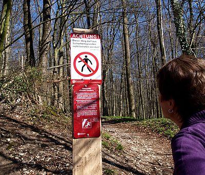 Naturwald Großer Freeden im Osnabrücker Land