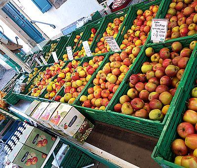 Eine große Auswahl an saisonalen Produkten – verbunden mit der schönsten Atmosphäre – bietet der Einkauf auf einem der zahlreichen Wochenmärkte im Osnabrücker Land.